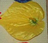С-140  Кала крупная 13 см, фото 1