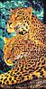 "Пляжное полотенце ""Леопард"" (V1061/08) | 6 шт."