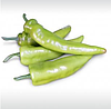 КАМПАЙ F1 - семена перца острого, 10 грамм, Kitano Seeds