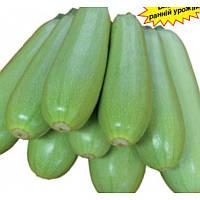 НЕМО F1 - семена кабачка, 500 грамм, Lark Seed, фото 1