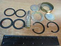 Ремкомплект шкворня ЗИЛ 5301 полный, старого образца (производитель Россия) 5301-3001019пРК