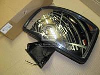 Зеркало MAN F2000, TGA слепая зона электро /подогрев 324X184  LL01-13-004H