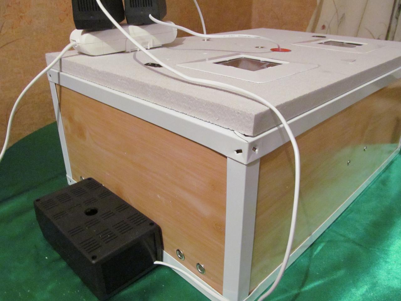 Инкубаторы бытовые автоматические своими руками фото 149