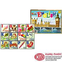 Гамма Кубики с английским алфавитом арт. 112042