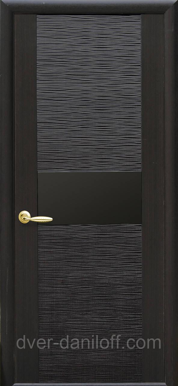 """Дверь """"Аста BLK"""""""