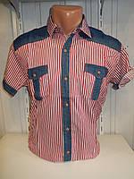 Рубашка мужская HARWEST  короткий рукав, полосы, джинсовые вставки 004 \ купить рубашку