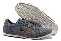 Мужские кроссовки Lacoste (Лакост) серые
