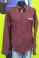 Рубашка фиолетового цвета в крупную точку 152 см