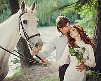 Выезд лошадей для свадебной фотосессии (6 лошадей)