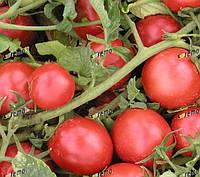 ТРИТОНЕКС - томат детерминантный, Semo, фото 1