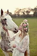 Выезд лошадей  для свадебной фотосессии (1 лошадь)
