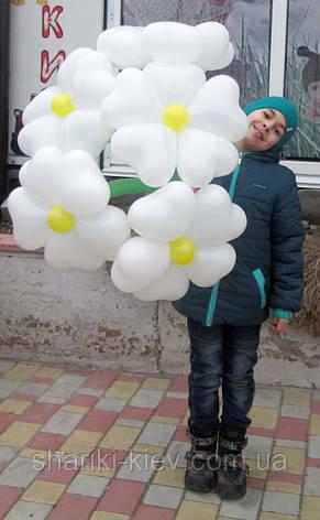 Большой букет из шариков сердец Ромашки белые на День рождения , фото 2