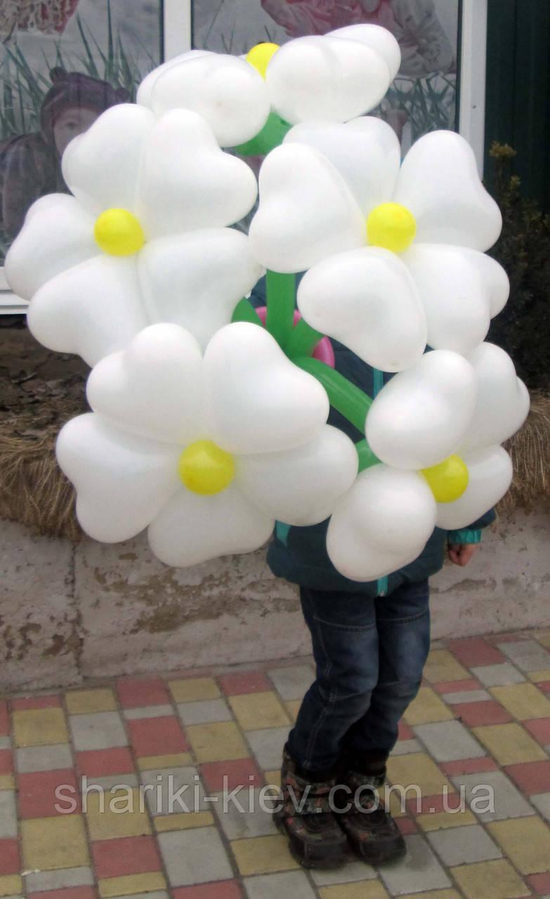 Большой букет из шариков сердец Ромашки белые на День рождения