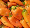 Гамик 1 тис. семена перца сладкого