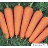 Семена моркови поздней Каскад F1, упаковка 100 000 (1,6 - 1,8) семян