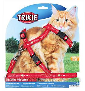 Шлейка  XL с поводком для больших котов 34-57см/13мм