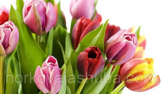 восьмое марта праздник женский магазин меха
