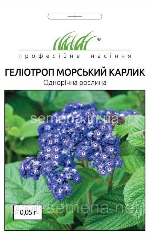 Геліотроп Морський карлик 0,05 г.
