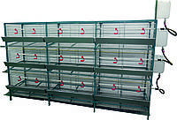 Универсальная разборная клетка для кур-несушек/бройлера, 36 гол.