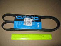 Ремень поликлиновый (производитель DAYCO) 5PK1360