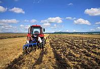 Земля в аренду для аграриев станет дороже