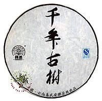 """Чай Шен Пуэр """"Иу С Тысячилетнего Дерева"""" 2014 Год, 10 Грамм, фото 1"""