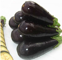 АНЕТ F1 - семена баклажана, 1 000 семян, Bayer