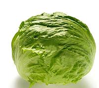 КУАЛА - семена салата тип Айсберг дражированные, 5 000 семян, Bayer