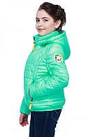 Короткая куртка для девочки весна осень