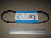 Ремень поликлиновый (производитель DAYCO) 5PK705EE