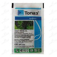Фунгицид  Топаз для защиты от заболеваний крыжовника, яблонь, овощных и ягодных культур