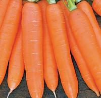 СИРКАНА F1 - насіння моркви Нантес (1,8-2,0) 100 000 насінин, Nunhems