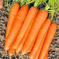 РОМАНС F1 - насіння моркви Нантес (1,8-2,0) 100 000 насінин, Nunhems