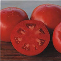 ПЛАТИНУМ F1 - семена томата детерминантного 1 000 семян, Nunhems, фото 1