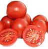 СОЛЕРОССО F1 - семена томата детерминантного 1 000 семян, Nunhems