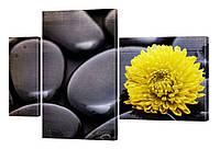 Модульная картина 206 Цветы