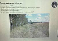 Фассад Одесской трассы 2,6га под строительство авто-кемпинга