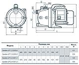 Бытовой насос «Насосы +» Garden–JP 1.5–25/0.8 с эжектором, фото 4