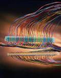MS²™ 4000-G/TR соединитель с гелем. 25-парные соединители модульной системы 3М™