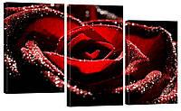 Модульная картина 321 роза
