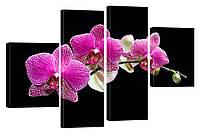 Модульная картина 316 орхидея