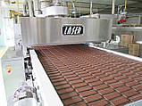 Автоматические линии производства печенья 200-300 кг/ч Laserbiscuit, фото 5