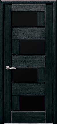 "Дверь ""Сиена BLK"", фото 2"