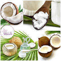 Самое интересное о кокосовом масле!