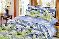 Двухспальный набор постельный (рисунок Лебеди)