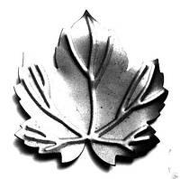 Виноградный лист 100х100х1,2