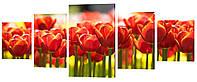 Модульная картина 367 тюльпаны