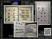 Я5414, РУСМ5414, Я5416, РУСМ5416  реверсивный двухфидерный ящик  управления  электродвигателем, фото 1