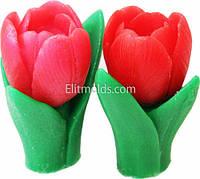 Силиконовая форма Весенний тюльпан 3D (2 формы)