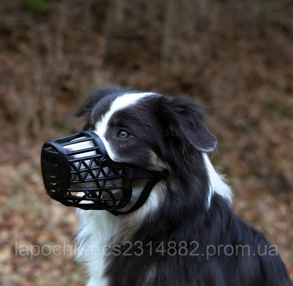 Trixie Намордник пластиковый для собак, черный